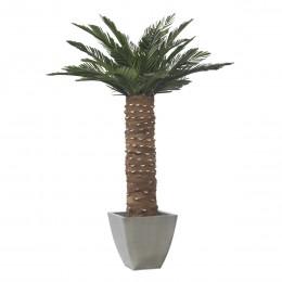 KCY/0115 Сика Пальма зеленый 150 см