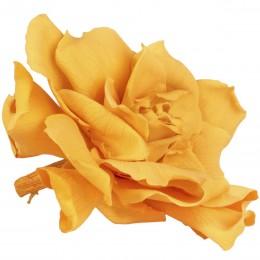 GAR/1350 Гардения Цветок желтый