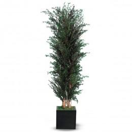 ALP/0118 Лепто дерево ветвистое / 180 зеленый