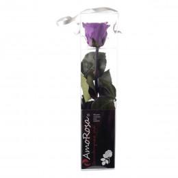 PRZ/2830 Амороза Мини в упак. 25 лиловый