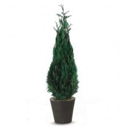 STA/0118 Стардаст дерево зеленый в комплекте