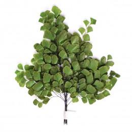 FAD/9102 Папоротник Адиантум зеленый
