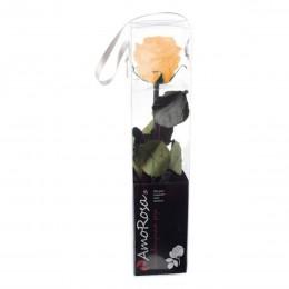 PRZ/2550 Амороза Мини в упак. 25 персиковый