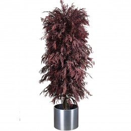 ANI/0224R Николи дерево ветвистое
