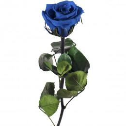 PRZ/2630 Амороза Мини в упак. 25 синий
